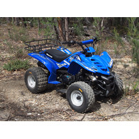 Star 125cc ATV Adult Size Quad