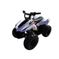 DHZ OUTLAWX70 Quad