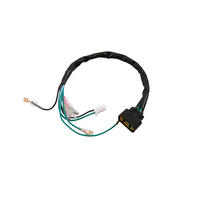 PitsterPRO 160HO, GPX 125 Engine Wiring Harness