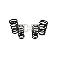 HD Tempered Valve Spring